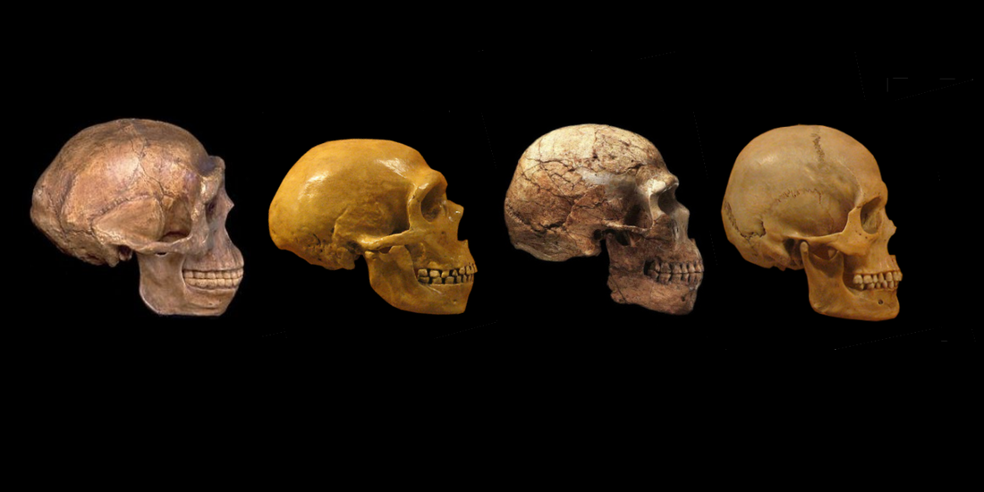 Modern Humans 200 000 Years Ago Not Quite Objective